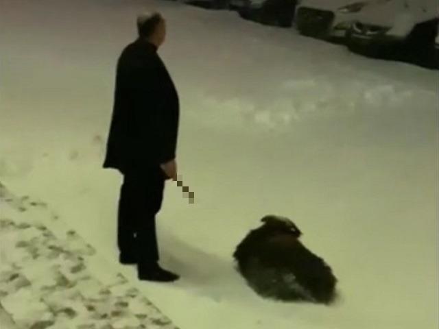 В Челябинске на глазах у прохожих зарезали барана