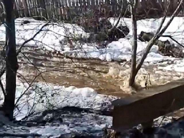 На Южном Урале в реке обнаружили труп