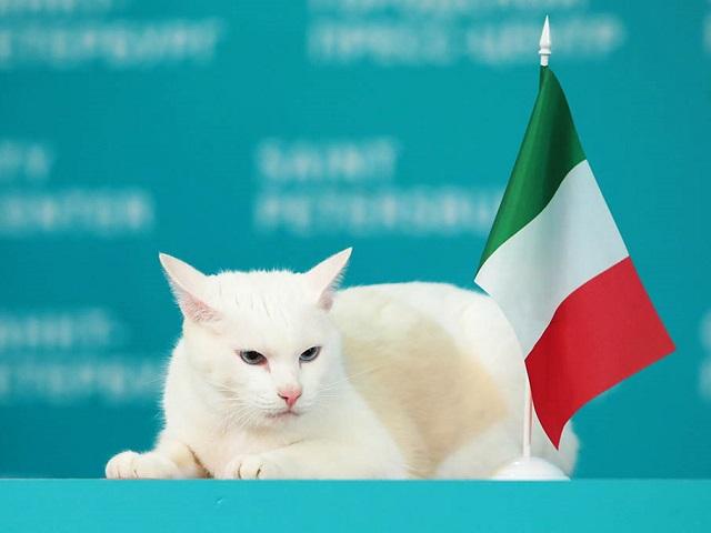Ахилл предсказал победу сборной Италии в первом матче Евро 2020