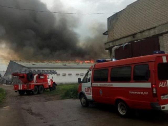 Под Челябинском сгорел цех птицефабрики «Равис»