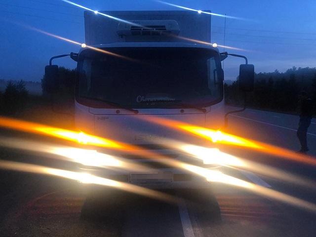 В Челябинской области грузовик переехал лежавшего на дороге человека