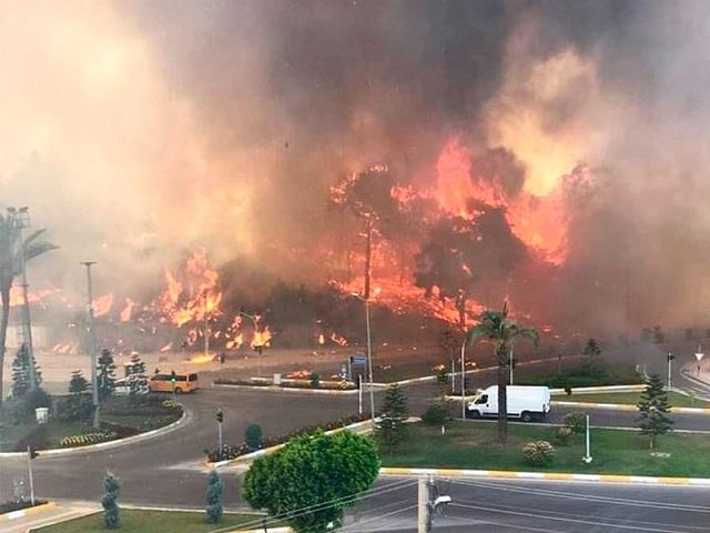 Лесные пожары охватили несколько районов Турции
