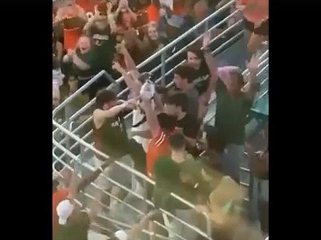Футбольные болельщики поймали кота, сорвавшегося с верхней трибуны стадиона. Видео