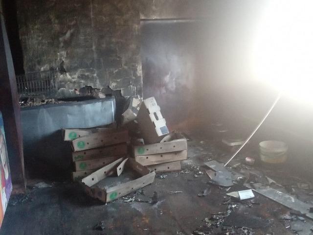В Миассе сгорел приют для животных «КотоПес»