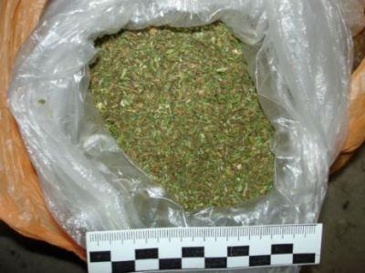 Марихуана из южноуральска под какой лампу выращивать марихуану