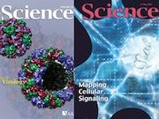 Учёные ЧелГУ стали соавторами статьи о метеорите в журнале
