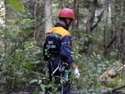 В лесу обнаружена девушка в неадекватном состоянии