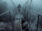 Река и бор, запечатленные объективами 27 фотографов