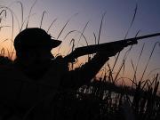 Миасские браконьеры попались в Башкирии