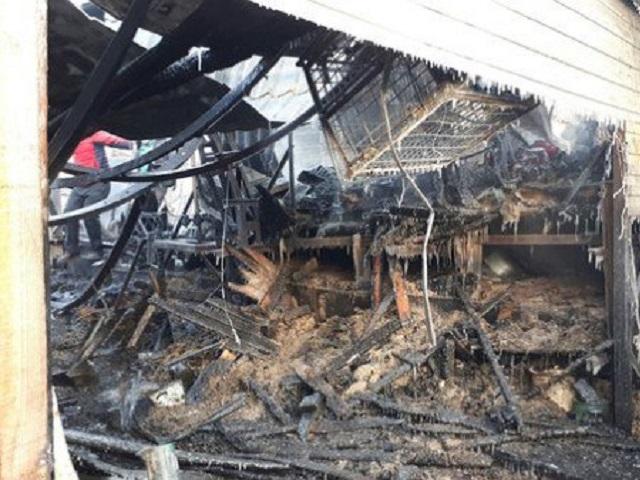 30 собак сгорели вприюте