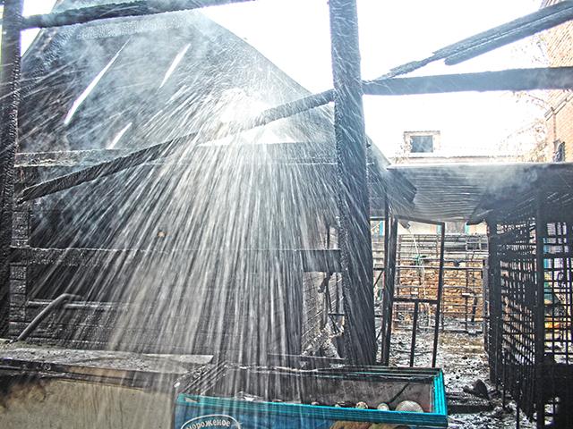 ВТроицке впожаре в личном доме обгорел медведь